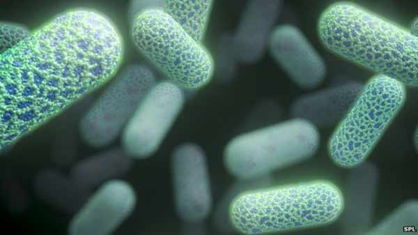 Antibiotics 'not being protected'