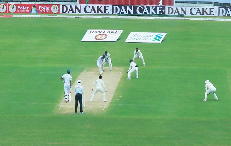 Hafeez fifty guides Pakistan reply
