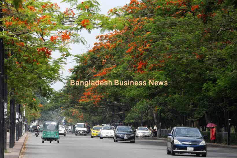 Krishnachura-in-Bangladesh