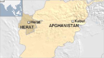 11 dead in Afghan siege