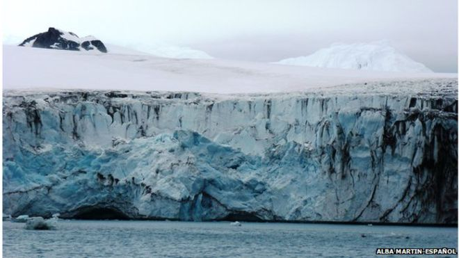 Antarctic in 'dramatic' ice loss