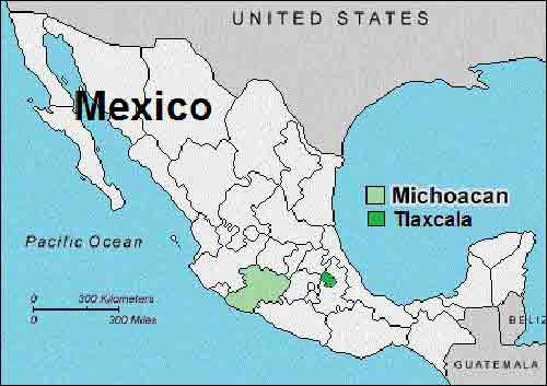 43 dead in Mexico gang shoot-out