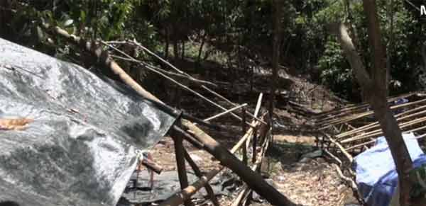 Thai graves are of Rohingya Muslims from Myanmar or Bangladesh: HRW