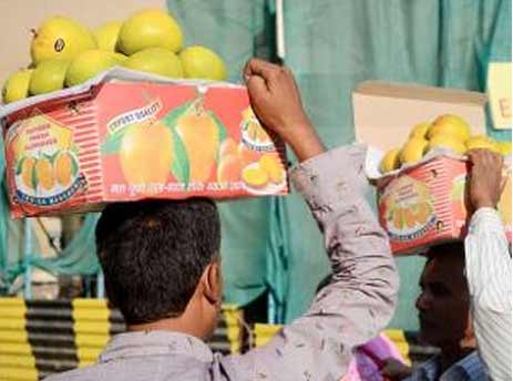 Indian mango traders face Bangladesh export duty hurdle