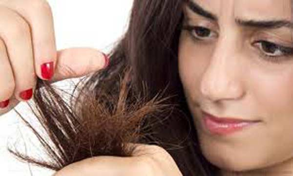 Home remedies to treat hair split ends