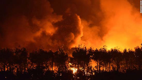 Twin blasts kill 44 in China's Tianjin port city