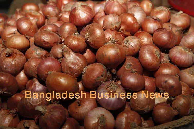 Onion prices fall slightly in capital