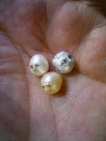 Artist carves faces, skulls out of pearls