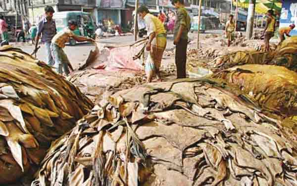 Bangladesh's tanners announce lower rawhide prices