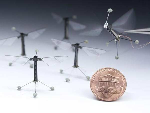 Scientists make Insect-size robot that can fly, swim