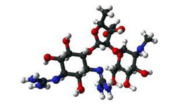 Streptomycin, an anitibiotic to treat TB, was discovered today: Life before the discovery