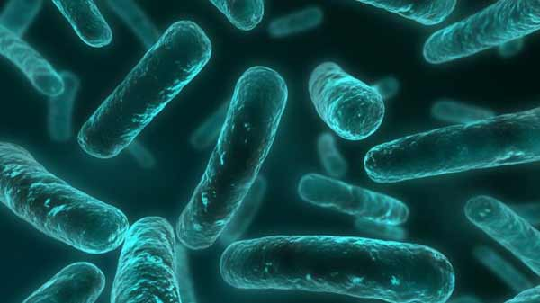 Antibiotic resistance: World on cusp of 'post-antibiotic era'
