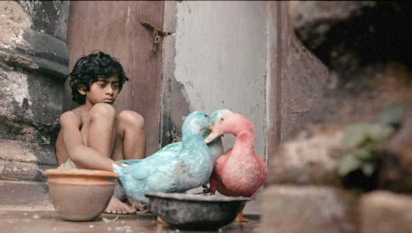 Bangladesh film 'Jalaler Golpo' awarded