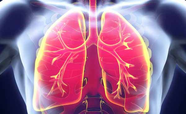 New method to produce 3D images of lungs developed