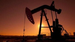 Oil hits $50 a barrel for first time this year