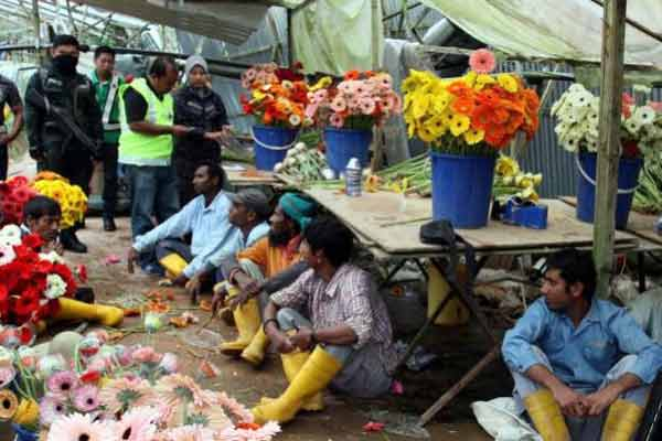 Malaysia halts intake of new foreign workers including 1.5mn Bangladeshi