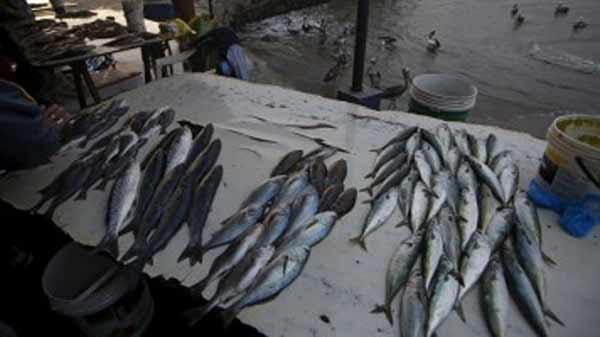 India may extend pact with Bangladesh on fisheries