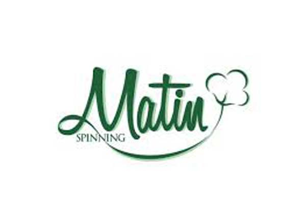 Matin Spinning face music for violating securities rules