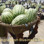 Watermelon in Bangladesh