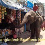 Man in Bangladesh begging
