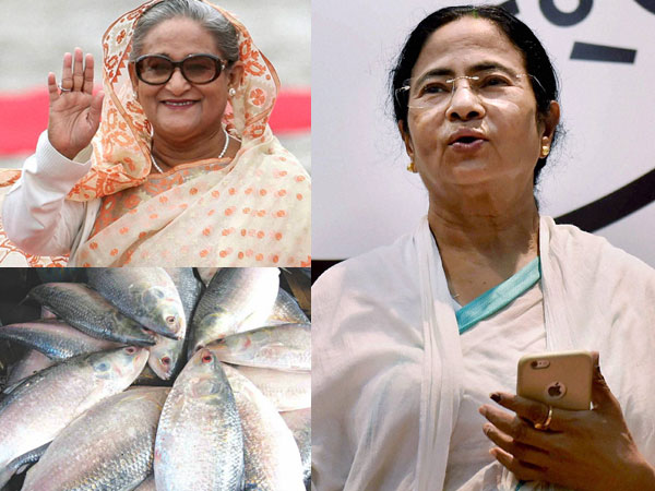 Bangladesh gifts Mamata 20 kg of fish ahead of oath-taking