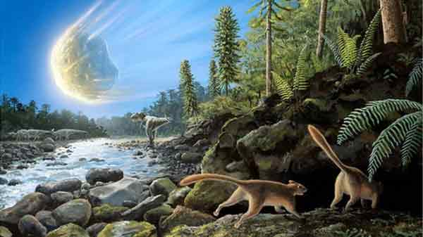 Rise of mammals 'earlier than thought'