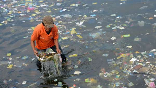 Plastic in sea is 'fast food for fish'