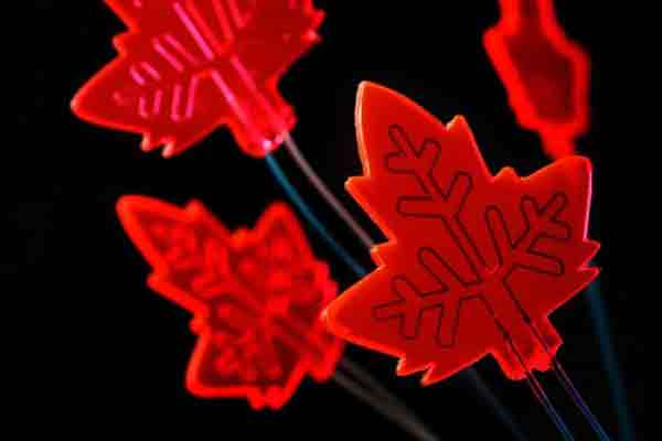 Artificial leaf captures light to power drug production