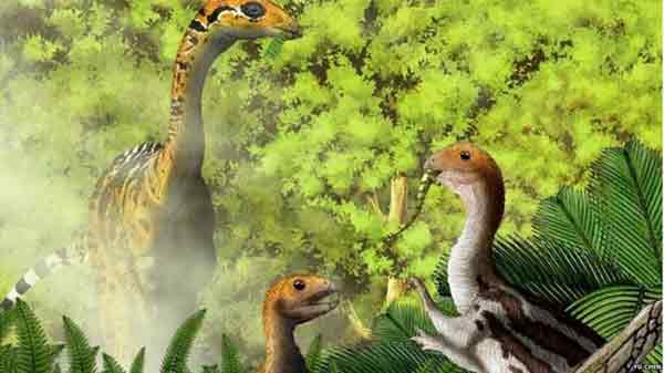 Some young dinosaurs shed teeth, say experts