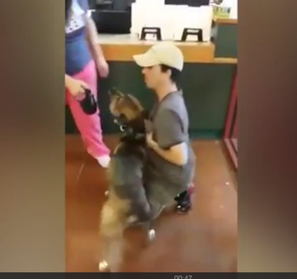 Man's emotional reunion with dog goes viral