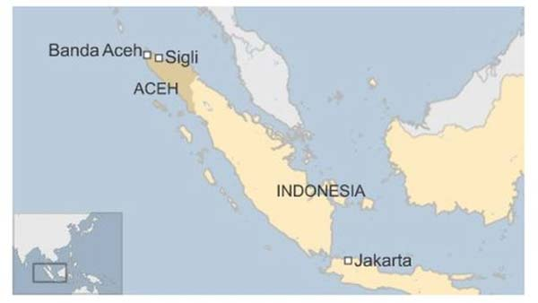 25 killed as deadly earthquake hits Indonesia