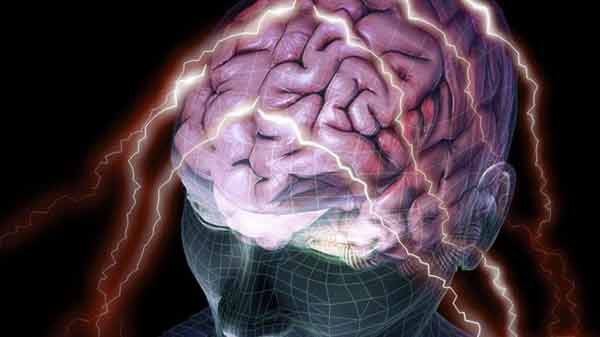 Personality differences 'seen in brain'