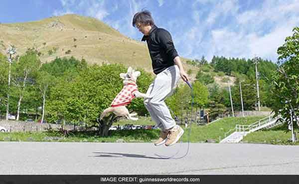 Dog, owner set new Guinness World Record for skipping