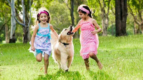 Children feel more attached to pets than to their siblings
