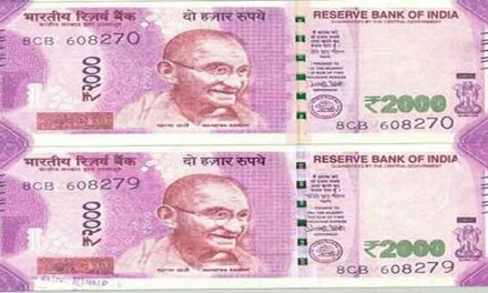 Fake notes worth Rs 2 lakhs seized along India-Bangladesh border