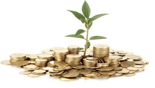 Bangladesh Lamps recommends 30pc cash dividend