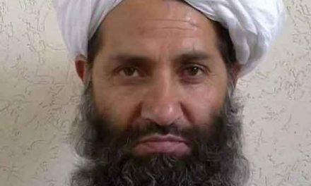 Taliban chief urges planting of trees