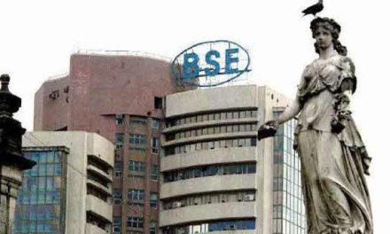 FMCG, capital goods stocks push Sensex up 213 points