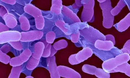 WHO lists 'most threatening' superbugs