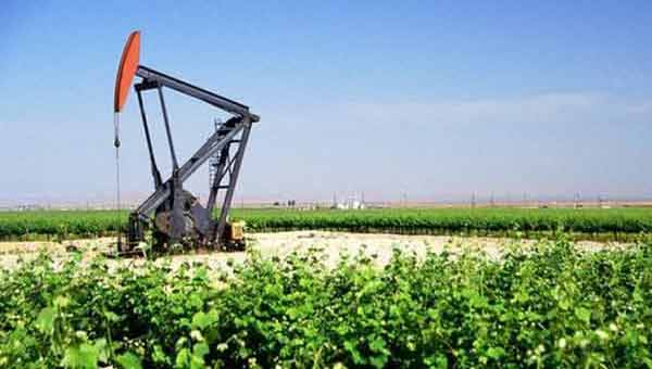 Crude oil prices drop in Asia as API build more than expected