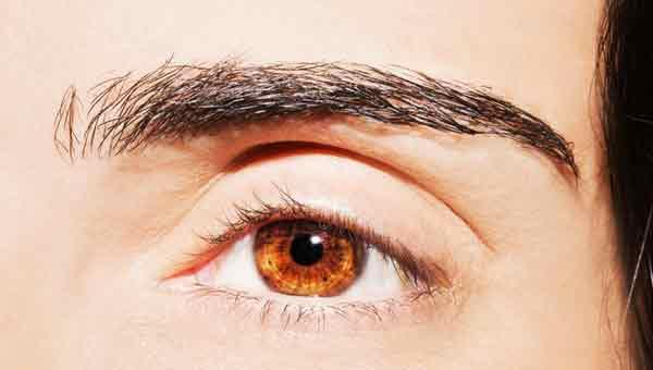 Vision 20/20: New nano-implant may help restore eyesight