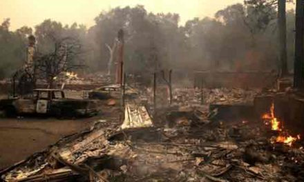 Forty dead as California blazes continue