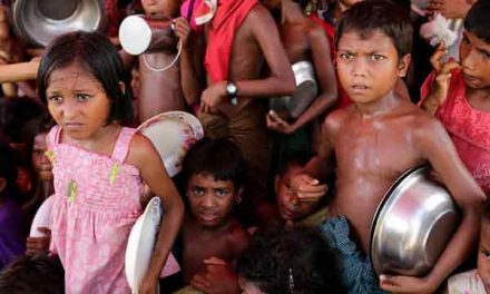 Report on Rohingya hunger shelved at Myanmar request