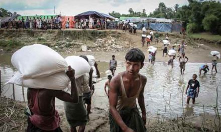Myanmar proposes Rohingya return from Bangladesh