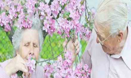 Declining sense of smell can help identify mild cognitive impairment