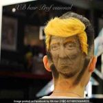 Donald Trump-inspired hairstyle is the strangest thing you'll see