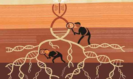 New system can identity people from their DNA in minutes